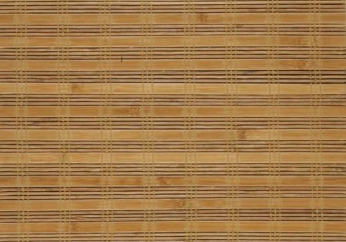 bambus_bc-13