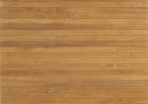 bambus_bk-12